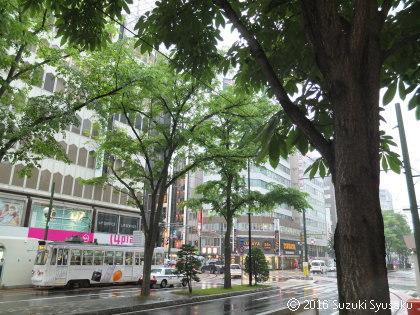 宮の森日記●雨の駅前通り