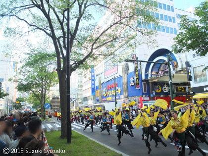 宮の森日記●YOSAKOIソーラン祭り