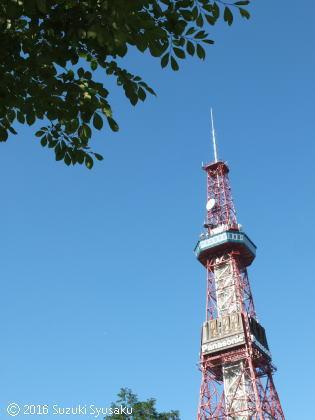 宮の森日記●テレビ塔