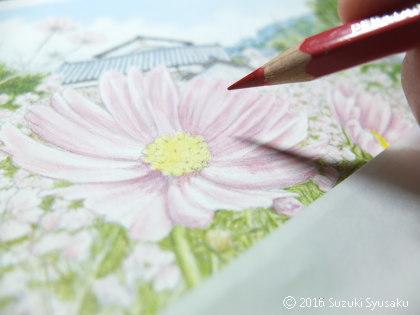 宮の森日記●色塗り中