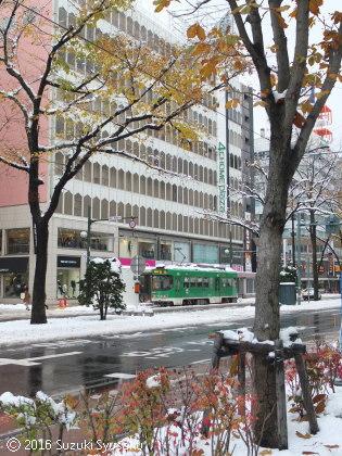 宮の森日記●雪景色