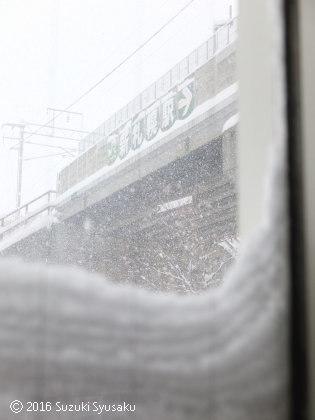 宮の森日記●大雪警報!