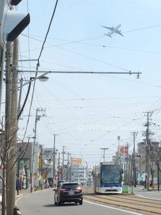 宮の森日記【出張編】●4/6(木)丘珠から東京へ