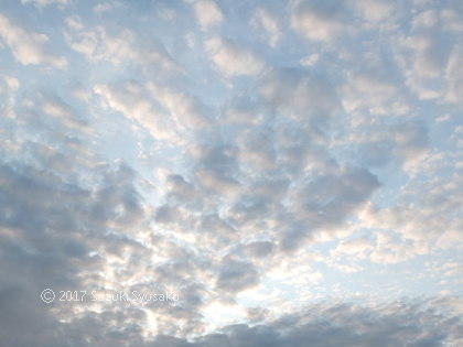宮の森日記●ちぎれ雲