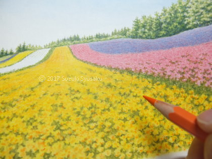 宮の森日記●花畑の風景