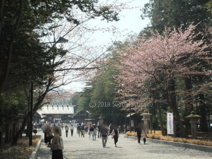 宮の森日記●北海道神宮