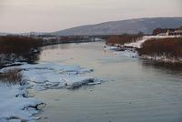 天塩川が解氷