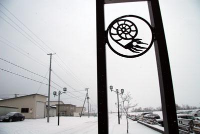 雪とアンモナイト