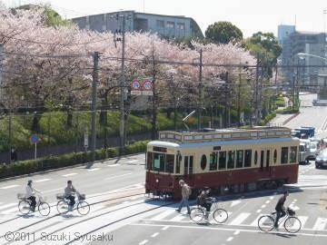宮の森日記【出張編】●4/14(木)東京の桜
