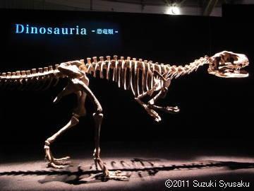 宮の森日記●地球最古の恐竜展