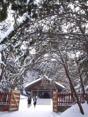 宮の森日記●再び北海道神宮