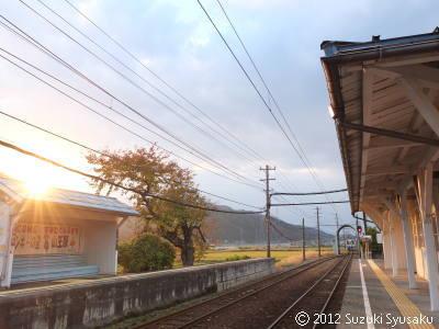 宮の森日記【出張編】●11/12(月)福井最終日