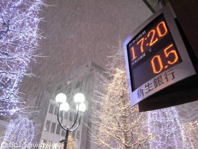 宮の森日記●猛吹雪!