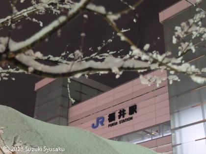 宮の森日記【出張編】●2/23(土)午後から飛行機で福井へ