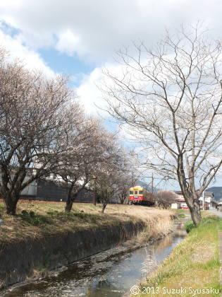 宮の森日記【出張編】●3/11(月)日帰りで大井川へ