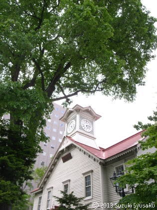 宮の森日記●東京からの来客