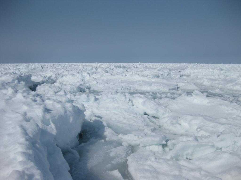 絶景!流氷!
