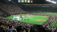 久々に札幌ドームで野球観戦