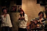 Karen afternoon bossa nova live at 吉祥寺strings