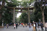 明治神宮と東郷神社参拝、そんでOB会